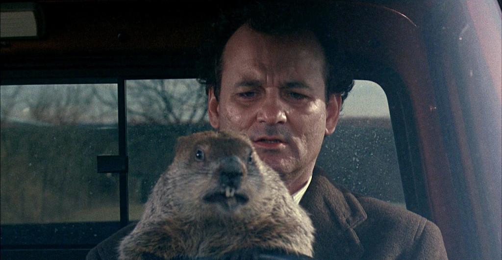Groundhog Day, Murkšķa diena