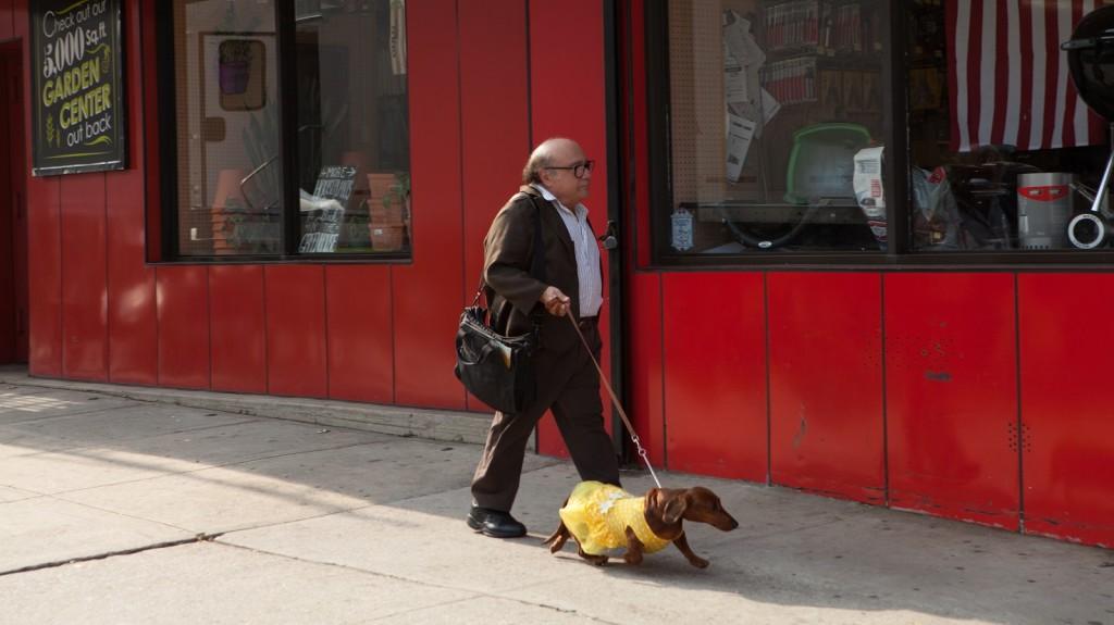 Wiener Dog, Cīsiņ Suns